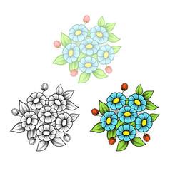 Daisy six flowers bouquet vector