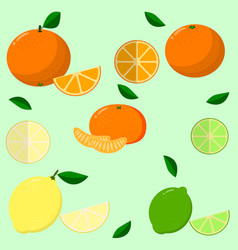 fruits collected in a set vector image