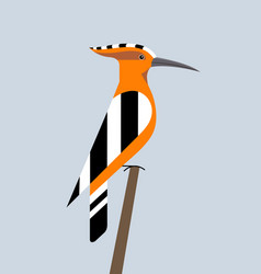 Hoopoe is sitting vector