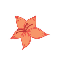 orange tropical flower hand drawn vector image