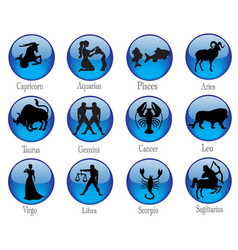 Signs of zodiac buttons vector image