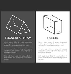 Triangular prism cuboid geometric shapes figures vector