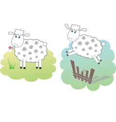 two white sheeps vector image vector image