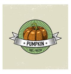 pumpkin vintage set of labels emblems or logo for vector image