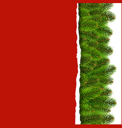 Fir tree border with ripped paper vector