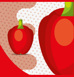 fresh vegetable red pepper bell on dots background vector image