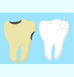 healthy cartoon tooth and decayed tooth with vector image