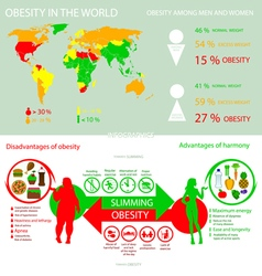 Infographics obesity in the world into flat style vector