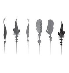 monochrome hand drawn bird feathers isolated on vector image