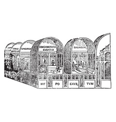 roman baths the baths of titus vintage engraving vector image
