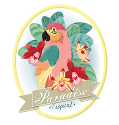 tropical-bird-orchid vector image