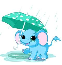 Cute baby elephant under umbrella vector image vector image