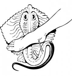 rays bite vector image