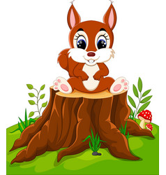 Cartoon cute baby squirrel on tree stump vector