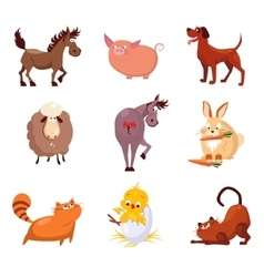 Domestic Animals and Birds vector image