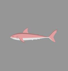 In flat style white shark vector