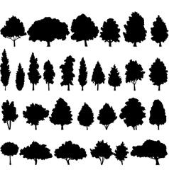 Set different deciduous trees vector