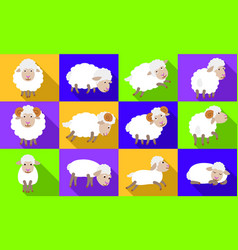 sheep icons set flat style vector image