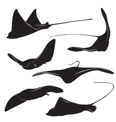 stingray silhouette vector image