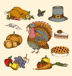 thanksgiving day hand drawn colored set vector image