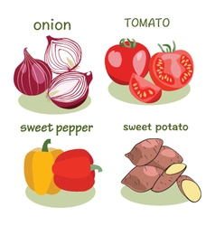 Vegetable icon set in flat style vector