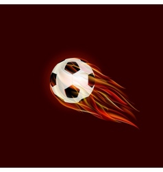 Flying Soccer Ball with Flame vector image