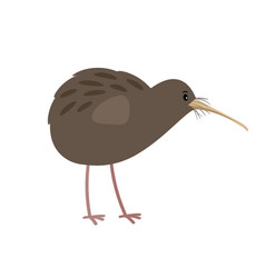 kiwi cute cartoon bird icon vector image vector image