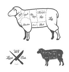 American cuts lamb or mutton diagram vector