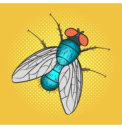 Hand drawn pop art of fly vector