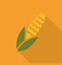 Maize corn flat icon colorful logo vector