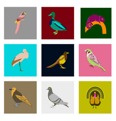 Set of in flat style birds vector