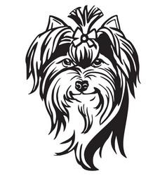 decorative portrait of dog yorkshire terrier vector image