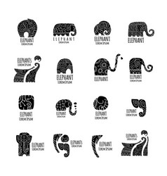 Elephant logo collection for your design vector