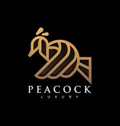 logo peacock gradient line art style vector image