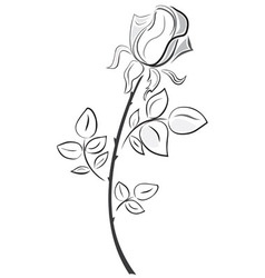 Rose in hand drawn style vector image