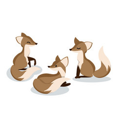 set cute cartoon foxes vector image
