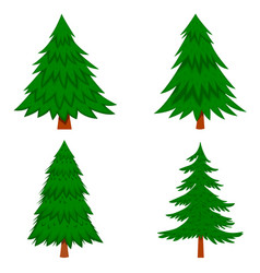 set pine tree in cartoon style isolated on vector image