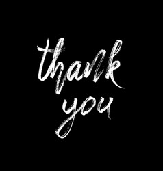 Thank you modern brush calligraphy vector