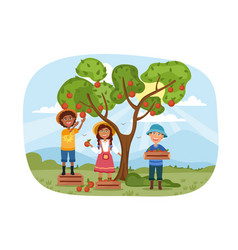 Three young children helping to harvest apples vector