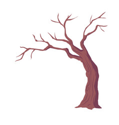 Tree with naked branches dry wood without leaves vector
