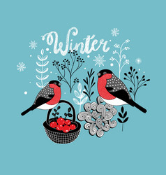 Two winter birds with the basket of berries vector