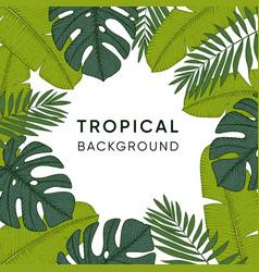 frame made of hand drawn tropical palm banana and vector image vector image