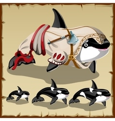 Set of killer whales and the armed orca vector