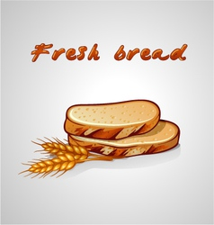 slice of bread and rye grain vector image