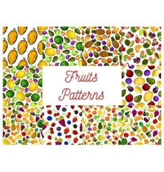 Tropical fruit and garden berry seamless pattern vector image vector image