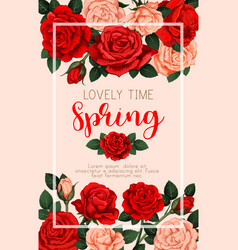 spring banner with roses vector image vector image
