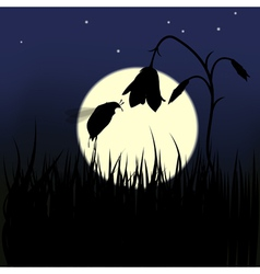 Bug and flower against the moon vector
