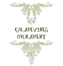 Grape ornaments vector