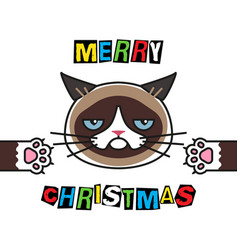 grumpy cat wishes you a merry christmason vector image