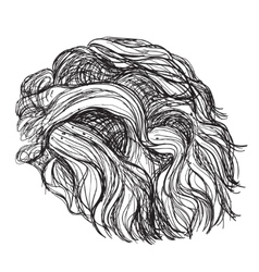 Hand drawn curly hair vector